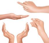 Hand — Vector de stock