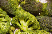 Green fresh broccoli — Stock Photo