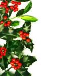 Christmas border — Stock Photo #10588500