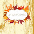 Autumn leaves background — Stock vektor #16792023