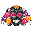 Stock Vector: Skull and roses