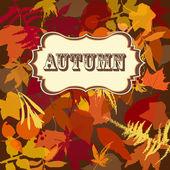 Autumn leaves background — Stockvektor