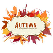 Autumn leaves background — Vetor de Stock