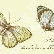 Vintage Butterfly Set — Stock Vector