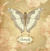 Card with a butterfly — Stock vektor