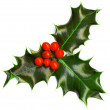 Christmas decoration — 图库照片 #8100561