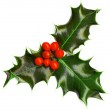 Christmas decoration — Stock Photo #8100561