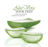 Fresh cut Aloe Vera slices — Stock Photo