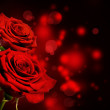 Red roses Valentine background — Stock Photo #18702833
