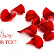 Stock Photo: Red rose petals