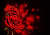 赤いバラのバレンタインの背景 — ストック写真