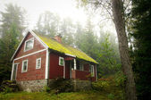 Old red cottage in the forest — Stock Photo
