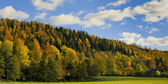 Landscape in autumn forest valley and home. — Stock Photo