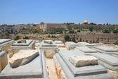 Stary cmentarz żyd na górze oliwnej w jerozolimie — Zdjęcie stockowe