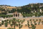 View overlooking Jerusalem city. — Stock Photo