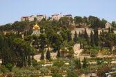 New Jerusalem monastery. Panorama — Fotografia Stock