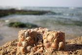 Figures de sable avec des coquilles — Photo