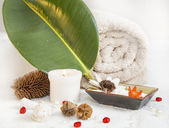 Natural SPA Elements — Stock Photo