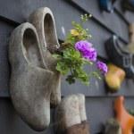Holland Clomps — Stock Photo
