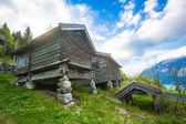 Houses with grass roof on an old Norwegian farm — Stock Photo