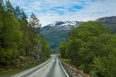 Norway road landscape — Stock Photo