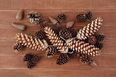 Pine Cones Decorations — Stock Photo