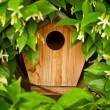 Hidden Bird House — Stock Photo #45438581