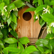 Bird House — Stock Photo #45439089