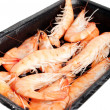 Shrimp on a tray — Stock Photo