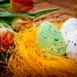 Birds eggs in nest with tulip flowers on vintage wooden backgrou — Stock Photo #22368131