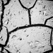 Close up of cracks earth — Stock Photo