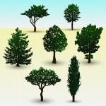 Types of tree illustration — Stock Vector