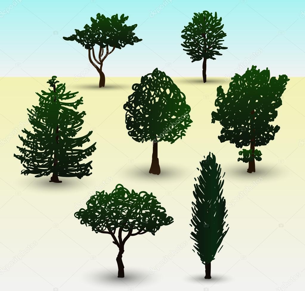 Tipi di illustrazione dellalbero vettoriali stock for Gli alberi sempreverdi