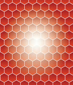 Honeycomb grid — Stock Vector