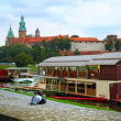 Dove and castle in Krakow — Stock Photo #15366261