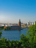 View on the City hall and Stockholm — Stock Photo