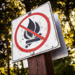 Stock Photo: No fires sign