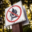 No fires sign — Stock Photo