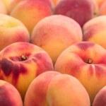 Постер, плакат: Peaches fruit background