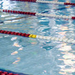 Swimming pool lane markers — Stock Photo #13199266