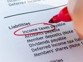 Impôts sur le revenu — Photo