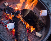 Roasting marshmallows — Stock Photo