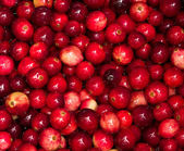 Cranberries boiling in pot — Stock Photo