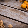 Stock Photo: Fall harvest background