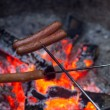 Stock Photo: Wiener roast on campfire