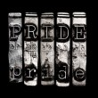 Sin of pride — Stock fotografie