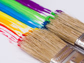 Paintbrushes painting rainbow colors — Stock Photo