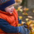 Boy carrying fall leaves — Stock Photo