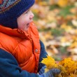 Boy playing in fall leaves — Stock Photo