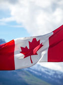Canadian flag in mountains — Stock Photo